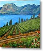 Okanagan Vineyard Metal Print