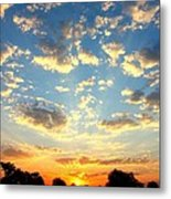 Okavango Delta Sunset Metal Print