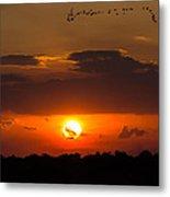 Okeechobee Sunset Metal Print