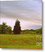 Oklahoma Storm Cloud Metal Print by Mickey Harkins