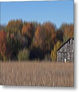 Old Barn In Armada Metal Print