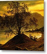 Old Birch Tree At The Sognefjord Metal Print