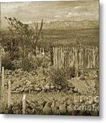 Old Boothill Cemetery Metal Print