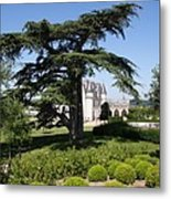 Old Cedar At Chateau Amboise Metal Print