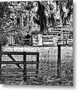 Old Chisolm Island Barn Metal Print by Scott Hansen