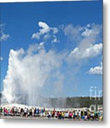 Old Faithful. With Thanks To Lee Metal Print