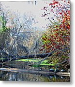 Old Florida Along The Sante Fe River Metal Print