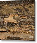 Old Forest Boards Metal Print
