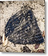 Old Forgotten Wool Cap Lying On The Ground Metal Print