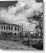 Old House And Cows - Bw Metal Print by Fabio Giannini