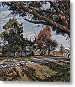 Old House And The Trees Metal Print