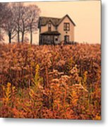 Old House In Weeds Metal Print