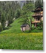 Old House On The Green Field Metal Print