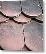 Old House Red Roof Tiles Metal Print
