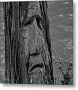 Old Man River Metal Print