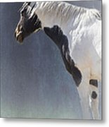 Old Paint Metal Print by Betty LaRue