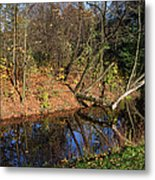 Old Park Canal In Autumn Metal Print