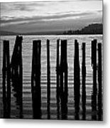 Old Pilings On Puget Sound - Tacoma - Washington - August 2013 Metal Print