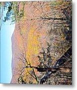 Old Rag Hiking Trail - 121215 Metal Print