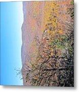 Old Rag Hiking Trail - 121223 Metal Print
