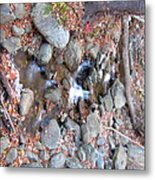Old Rag Hiking Trail - 121257 Metal Print