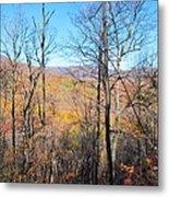 Old Rag Hiking Trail - 12128 Metal Print