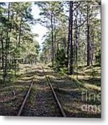 Old Railroad Tracks Metal Print