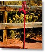 Old Red Pump Metal Print