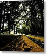 Old Road Metal Print