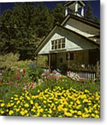 Old Schoolhouse And Garden. Metal Print