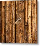Old Shed Door Metal Print