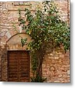Old Stone House With Plants  Metal Print