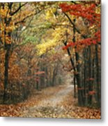 Old Trace Fall - Along The Natchez Trace In Tennessee Metal Print by T Lowry Wilson