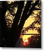 Old Tree And Sunset Metal Print