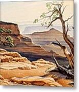 Old Tree At The Canyon Metal Print