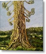 Old Tree In Spring Light Metal Print
