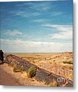 Old Tree In The Road. Petrified Forest National Park Metal Print