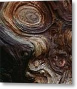 Old Tree Trunk With Knots And Patterns  Metal Print