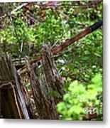 Old Wheelbarrow In The Weeds Metal Print
