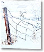 Old Wire Fence Metal Print