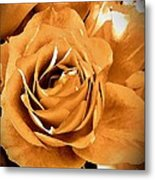 Old World Roses  Metal Print