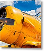 Old Yeller Metal Print