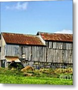 Olden Beauty Metal Print