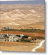 Olive Grove Near Hebron Metal Print