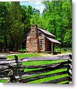 Oliver Cabin 1820s Metal Print by David Lee Thompson