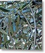 Olives Metal Print