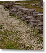 Olympia Ruins And Wild Flowers   #9678 Metal Print