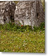 Olympia Ruins And Wild Flowers   #9821 Metal Print