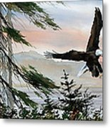 Olympic Coast Eagle Metal Print