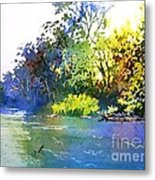 On A Hot Day Metal Print